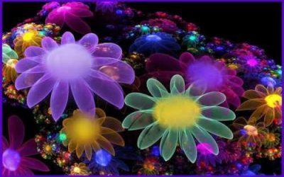 Cromoterapia: La vida a colores…